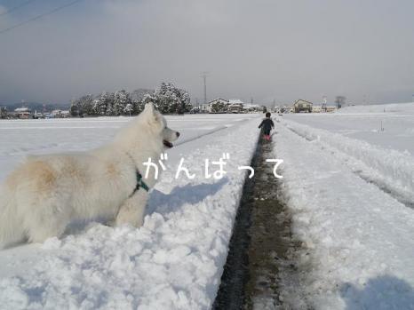 20121225_09.jpg