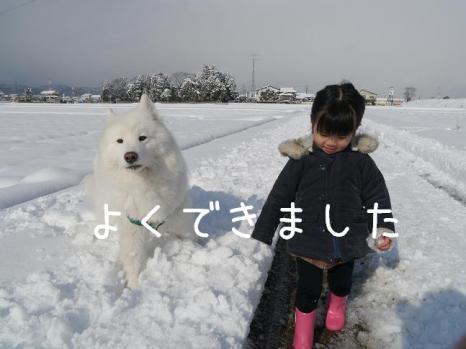 20121225_10.jpg