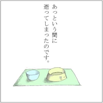 20111106-4.jpg