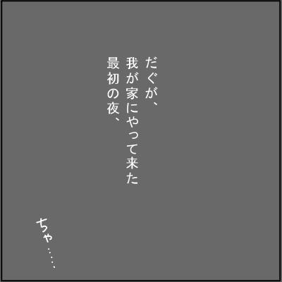 20120226-1.jpg