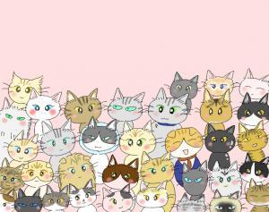 猫友日めくりカレンダー ③