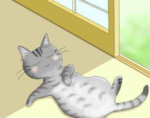猫友日めくりカレンダー ②
