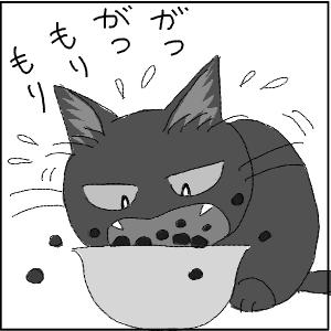 20120113 黒猫さん 12