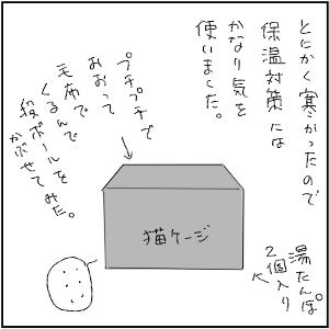 20130113 黒猫さん 19