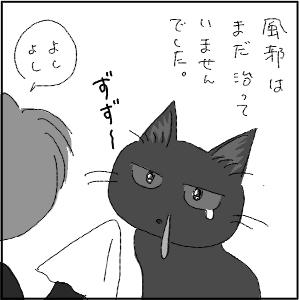 20130113 黒猫さん 17