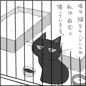 20130113 黒猫さん 18