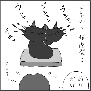 20130113 黒猫さん 16