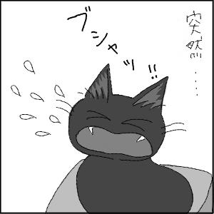 20130113 黒猫さん 15