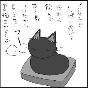 20130113 黒猫さん 14