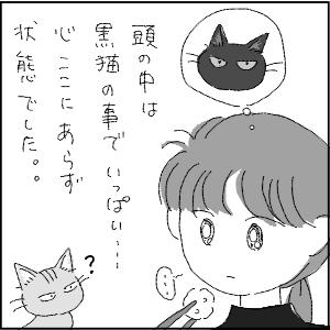 20130113 黒猫さん 21