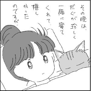 20130113 黒猫さん 22