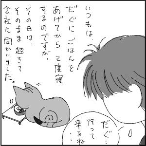 20130117 黒猫さん 2