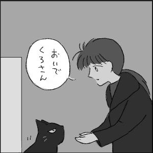 20130117 黒猫さん 11