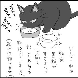 20130123 黒猫さん 6