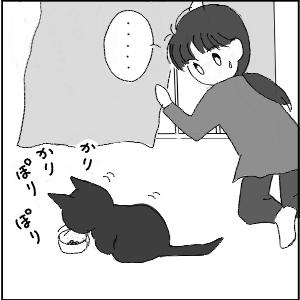20130123 黒猫さん 3