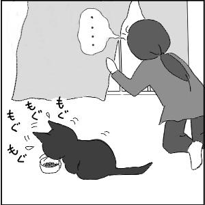 20130123 黒猫さん 2