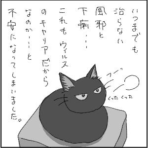 20130123 黒猫さん 8