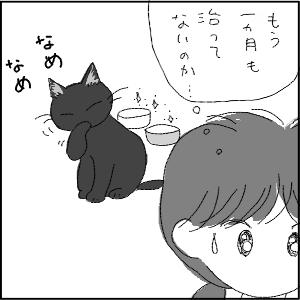 20130123 黒猫さん 7