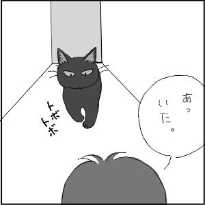 20130123 黒猫さん 13