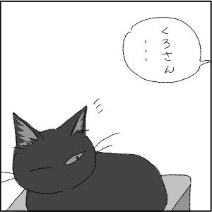20130123 黒猫さん 23
