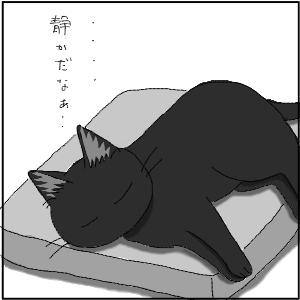 20130209 黒猫さん 9