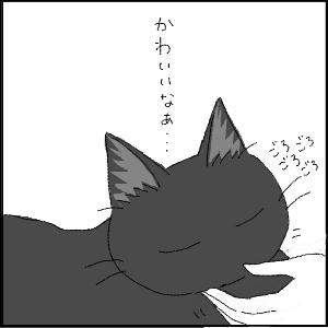 20130209 黒猫さん 18