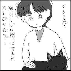20130209 黒猫さん 16