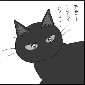 20130209 黒猫さん 13