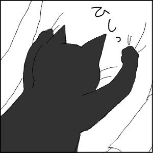 20130209 黒猫さん 20