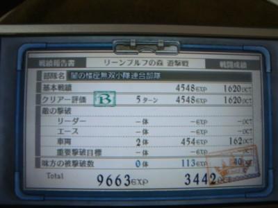 10041703DSC03294.JPG