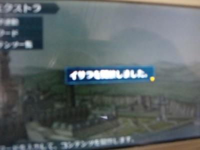 10041703DSC03314.JPG