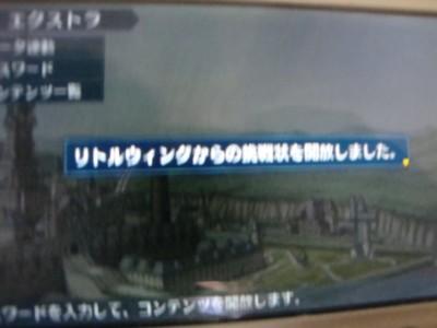 10041703DSC03318.JPG
