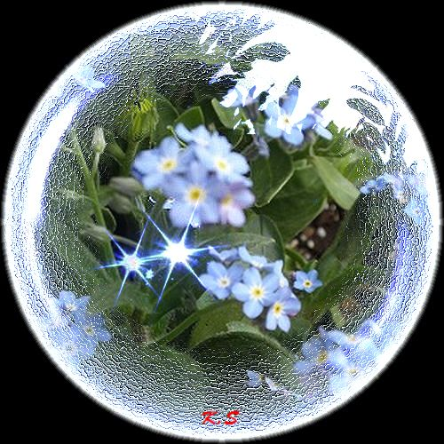 霙枠青い花球体