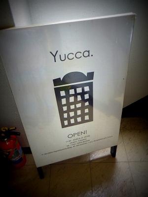 yucca(5).jpg