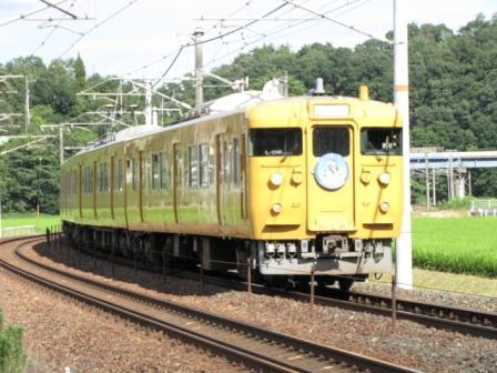 kiiro1152.jpg