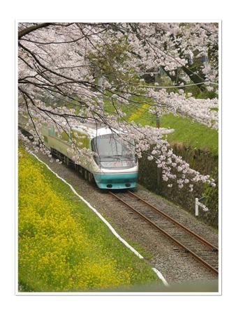 100406(スタンプもの)桜2