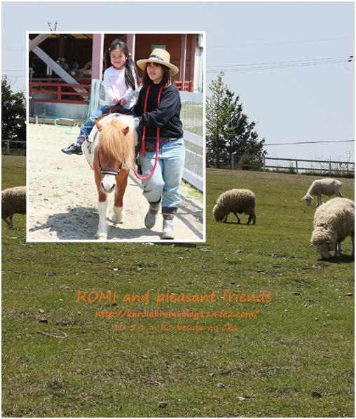 manami no hatu pony