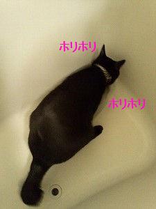 111218_3.jpg