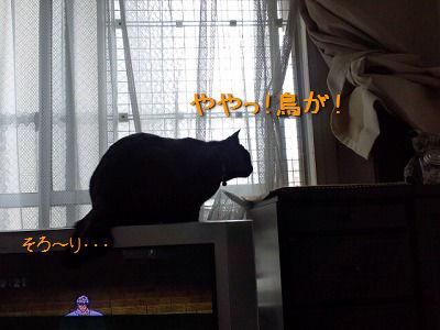 120708_1.jpg