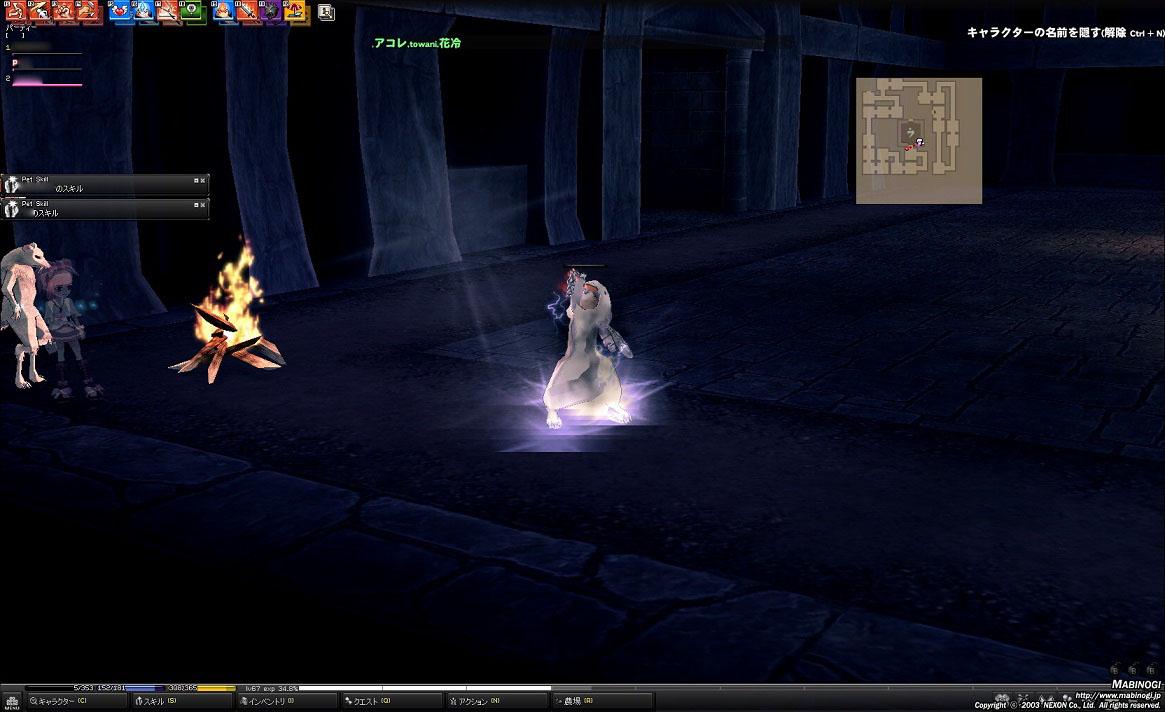 mabinogi_2011_06_19_169.jpg