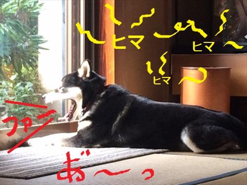 三連休⑤_R