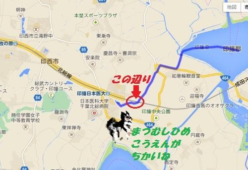 BlogIMG_0563.jpg