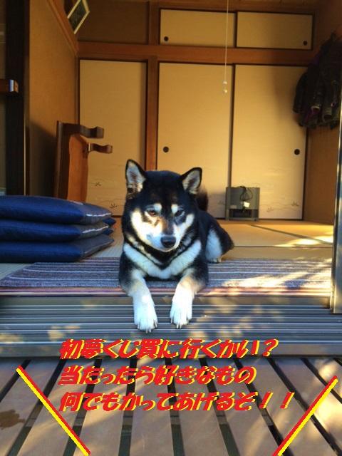 IMG_2104Blog.jpg
