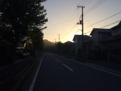 IMG_5439Blog.jpg