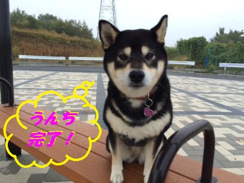 IMG_5796Blog.jpg