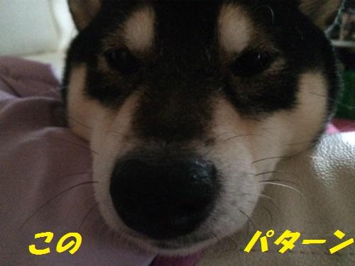 IMG_9019Blog.jpg