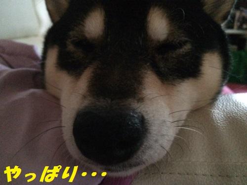 IMG_9021Blog.jpg