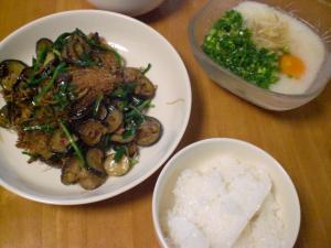ナスと豚挽肉の炒め物、とろろ