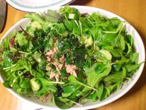 ツナ入りグリーンサラダ