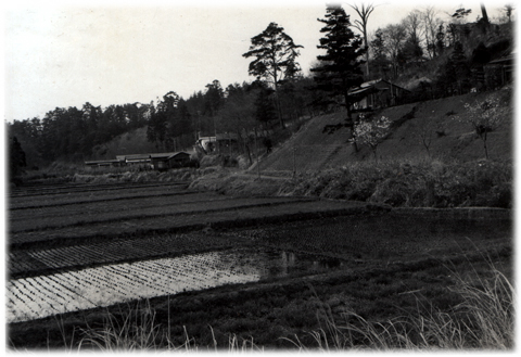shibakoen-machida1950s02.jpg